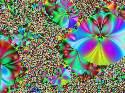 Izoux - Méduses - 2093 ème avec 48 clicks